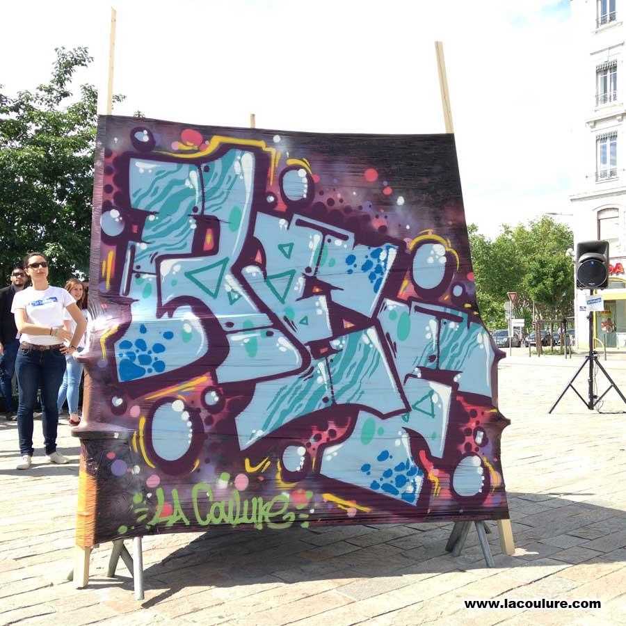 graffiti_lyon_demonstration_003