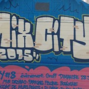 graffiti_lyon_demonstration_011