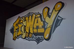 graffiti street art sport lyon